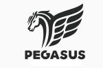 Peignes Pégasus
